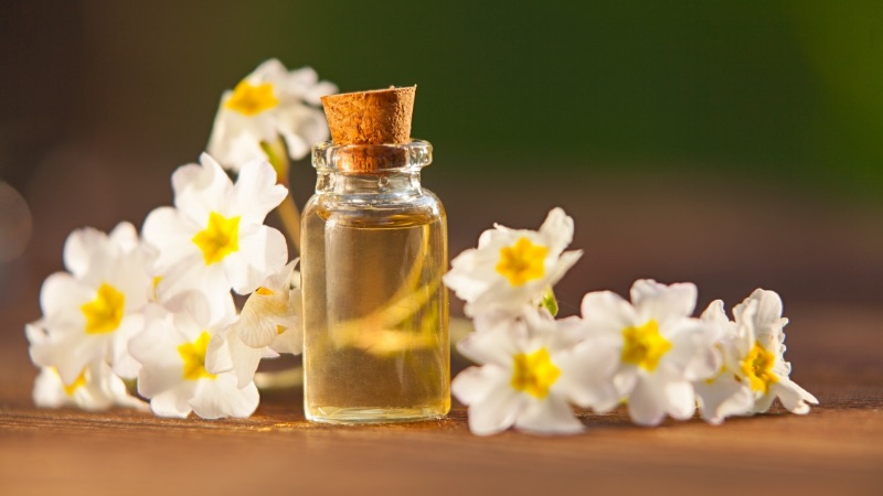 shiftMD - What are the uses of primrose oil?
